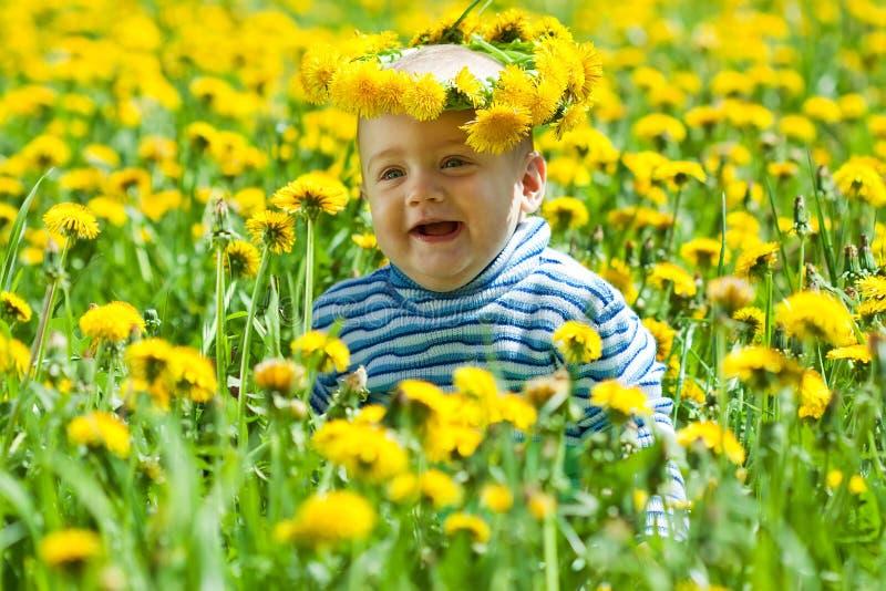 Bebê pequeno no prado foto de stock royalty free