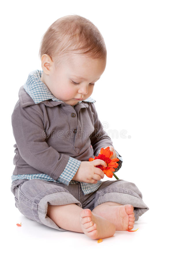 Bebê pequeno que guarda a flor alaranjada imagem de stock royalty free