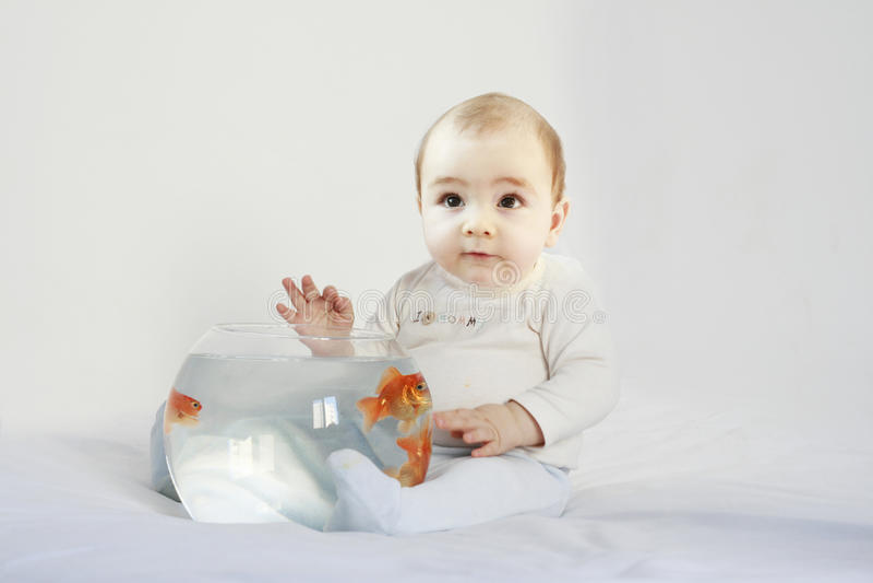 Bebê pequeno que prende um tanque de peixes fotografia de stock royalty free