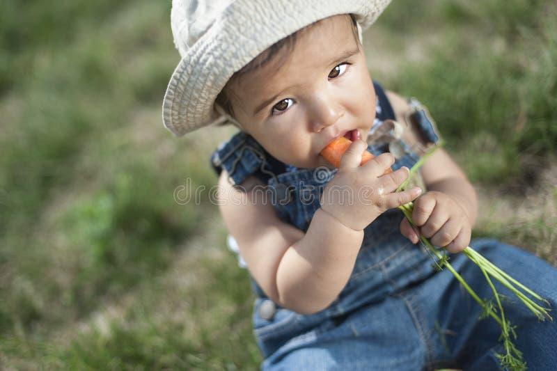 Bebê que come a cenoura fotos de stock royalty free