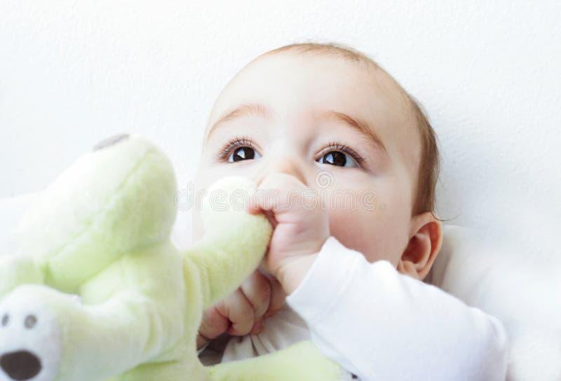 Bebê que come um brinquedo foto de stock