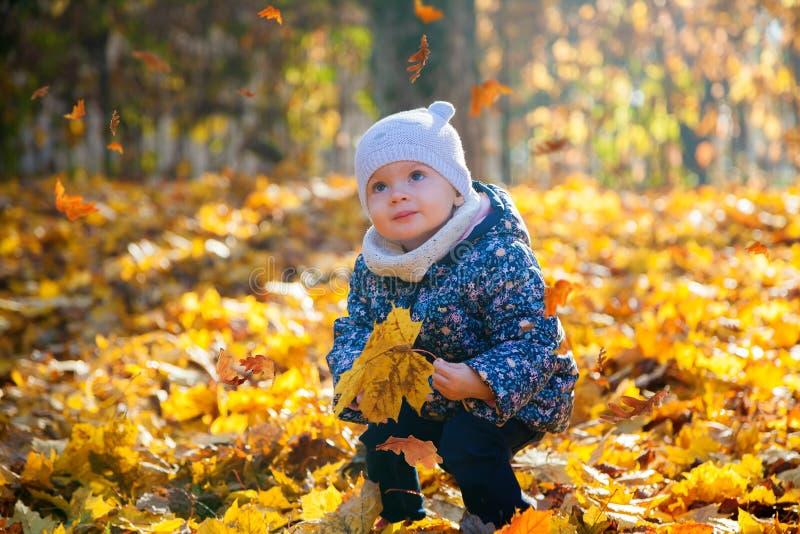 Bebê que olha as folhas que caem para baixo fotografia de stock royalty free