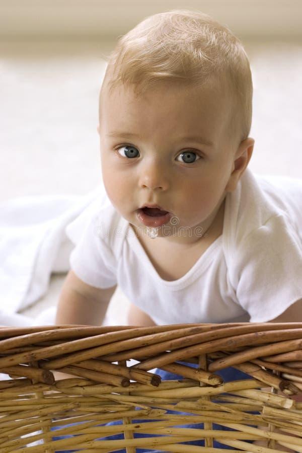 Bebê que olha surpreendido imagens de stock royalty free