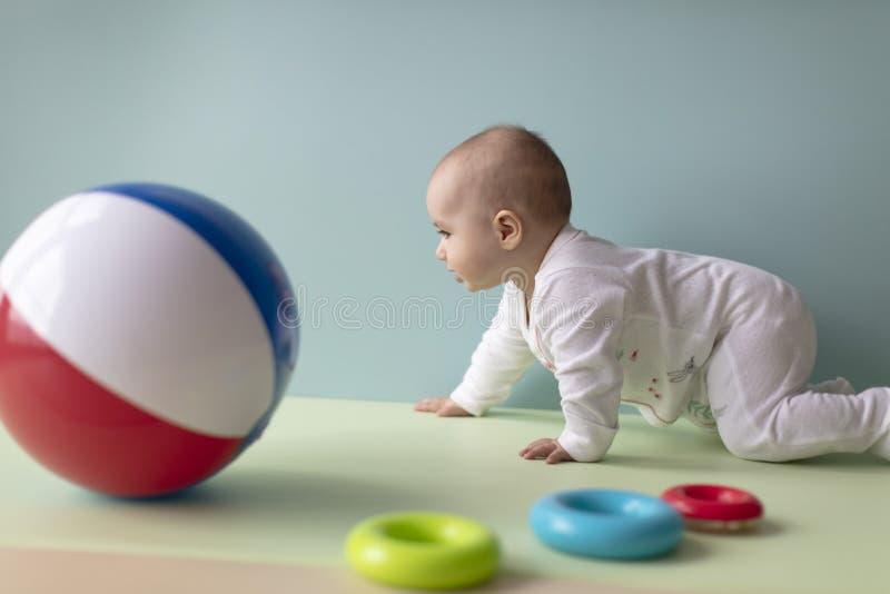 Bebê que rasteja para buscar um brinquedo imagem de stock royalty free