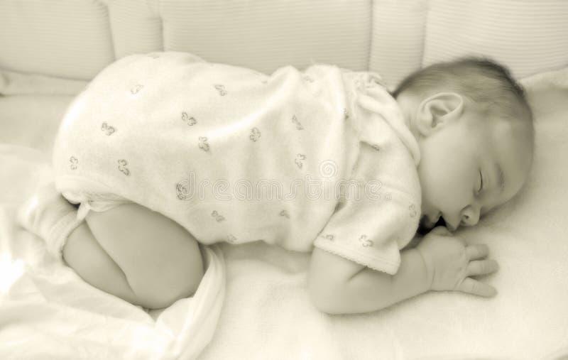 Bebê recém-nascido imagem de stock