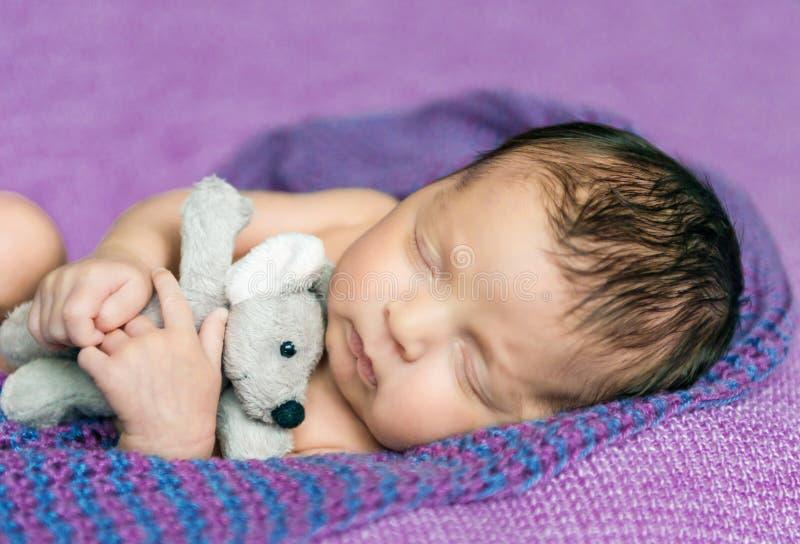 Bebê recém-nascido adormecido em uma cobertura roxa imagens de stock royalty free