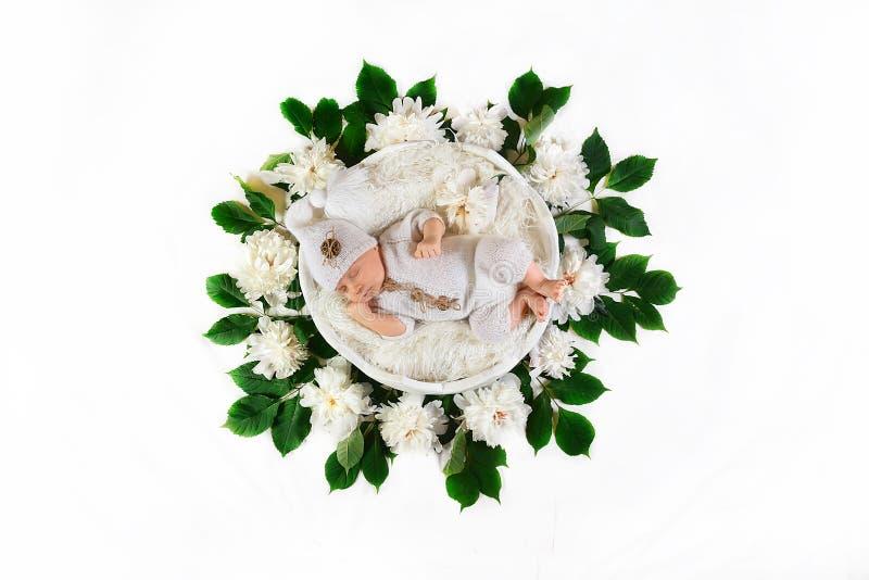 Bebê recém-nascido de sono em uma cesta em um vestido branco, com as peônias das flores brancas e as folhas verdes, em um fundo b fotos de stock