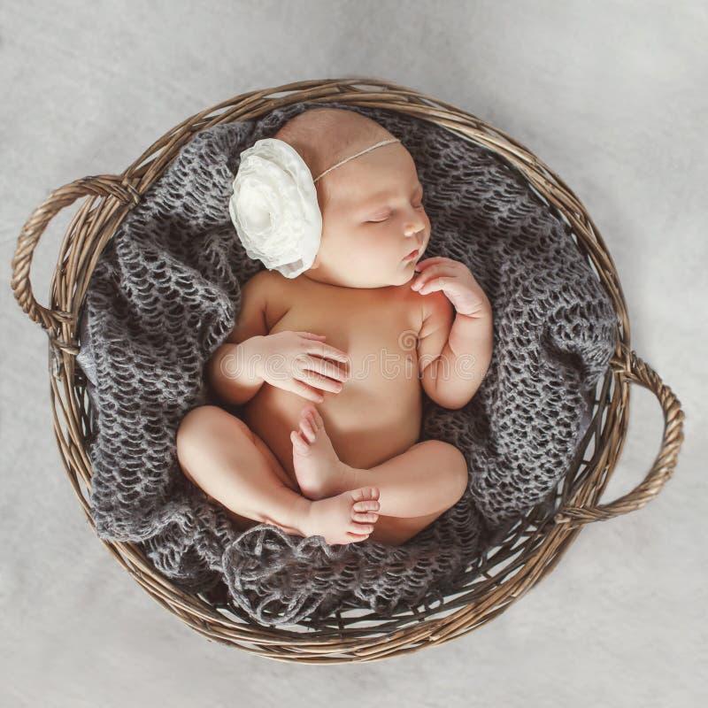 Bebê recém-nascido em uma cesta de vime redonda imagem de stock royalty free