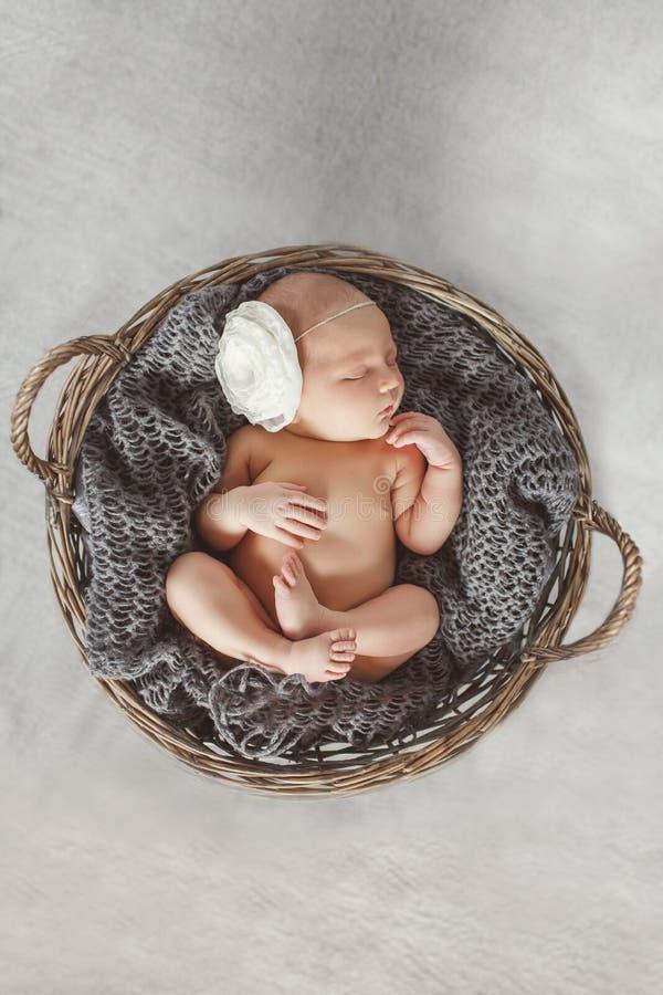Bebê recém-nascido em uma cesta de vime redonda imagem de stock