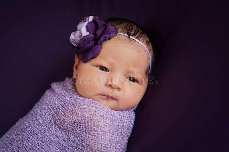 Bebê recém-nascido na alfazema e no roxo imagens de stock