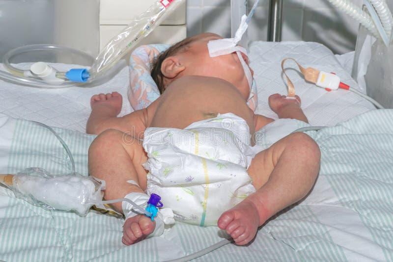 Bebê recém-nascido na máquina de respiração com o sensor do oxímetro do pulso e o cateter intravenoso periférico no hospital do ` fotos de stock royalty free