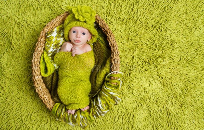 Bebê recém-nascido no chapéu verde de lã dentro da cesta foto de stock royalty free
