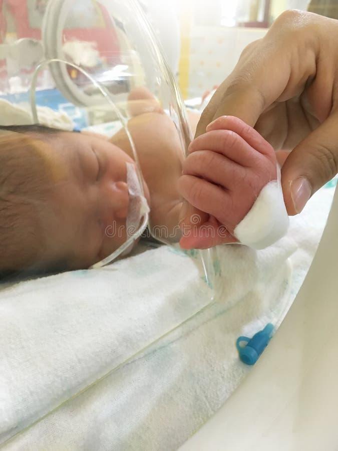 Bebê recém-nascido paciente na incubadora imagens de stock