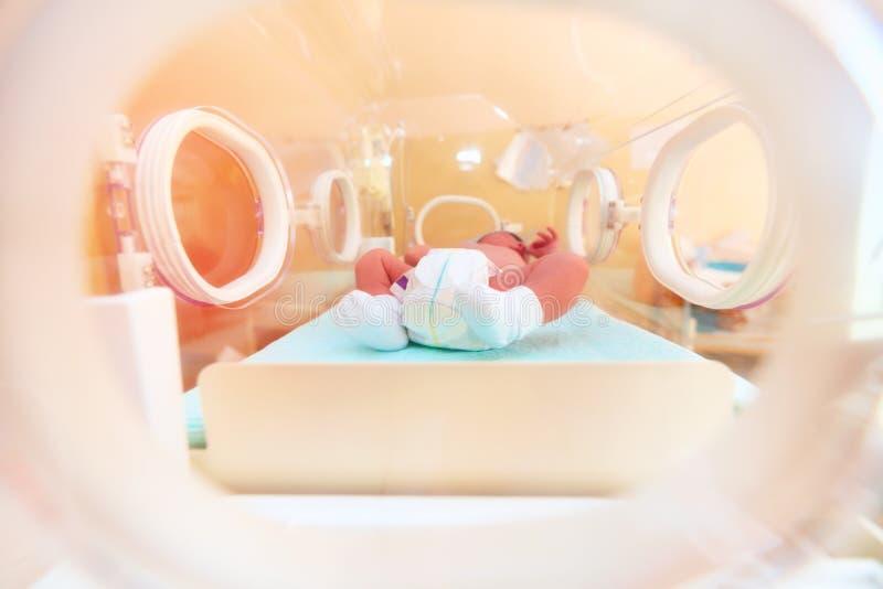 Bebê recém-nascido que encontra-se dentro da incubadora infantil no hospital fotografia de stock royalty free