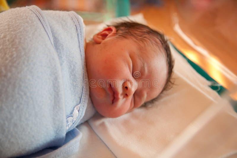 Bebê recém-nascido Swaddled fotografia de stock