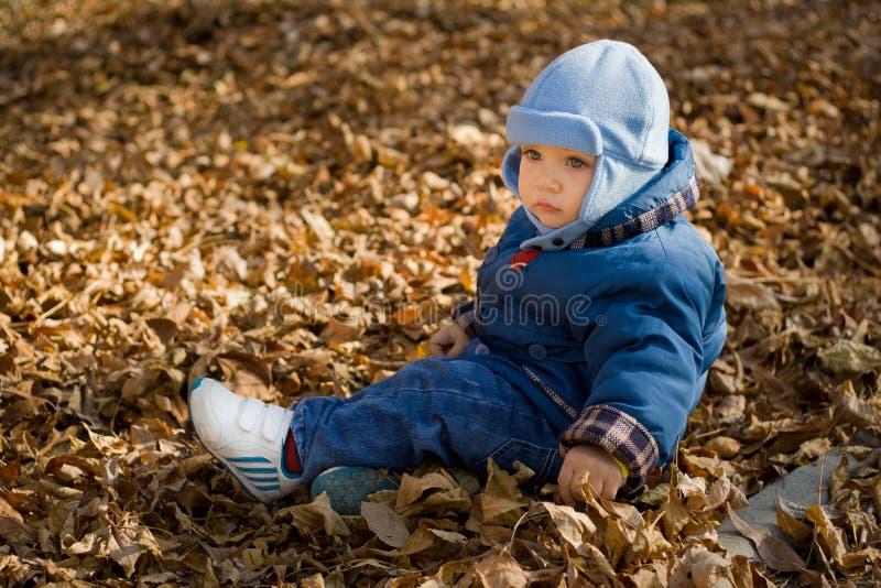 Bebê triste nas folhas secas foto de stock