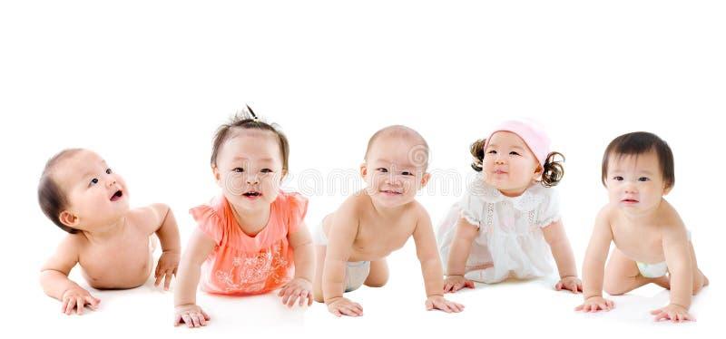 Bebês asiáticos imagem de stock royalty free