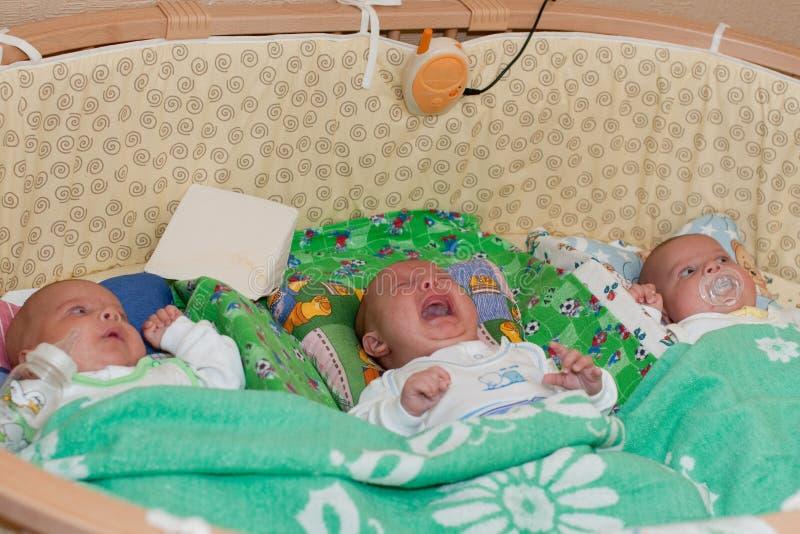 Bebês da objectiva tripla fotos de stock