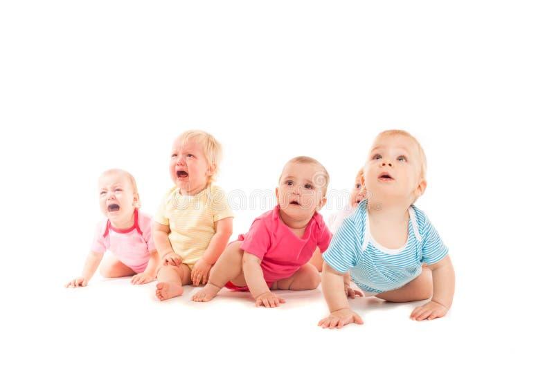 Bebês de grito isolados foto de stock royalty free
