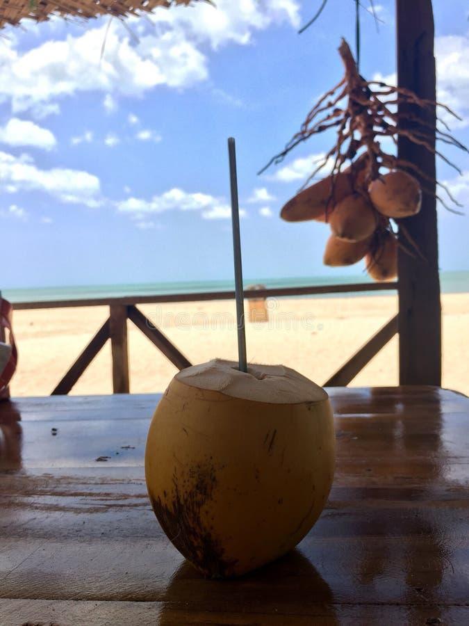 Bebida alaranjada do coco na praia fotografia de stock