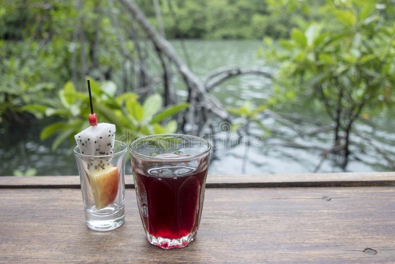 Bebida bem-vinda, refresco imagens de stock