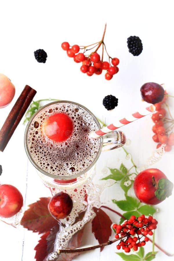Bebida caliente del otoño del zumo de manzana imágenes de archivo libres de regalías