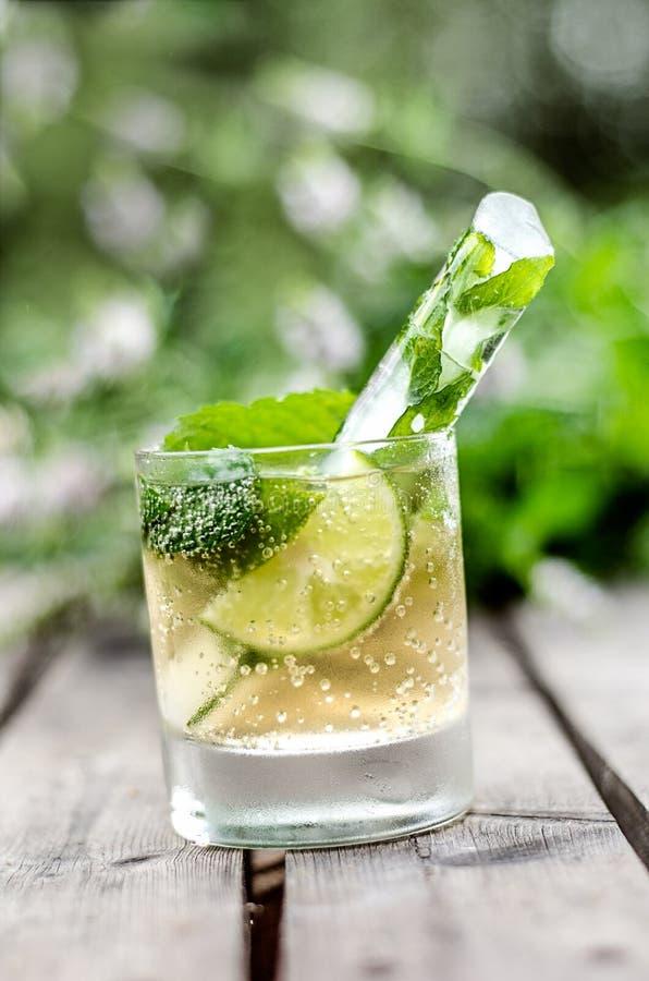 Bebida con la menta y el hielo en jardín imagen de archivo