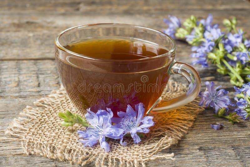 Bebida da chicória no copo e nas flores no fundo de madeira rústico Planta medicinal Cichorii imagens de stock