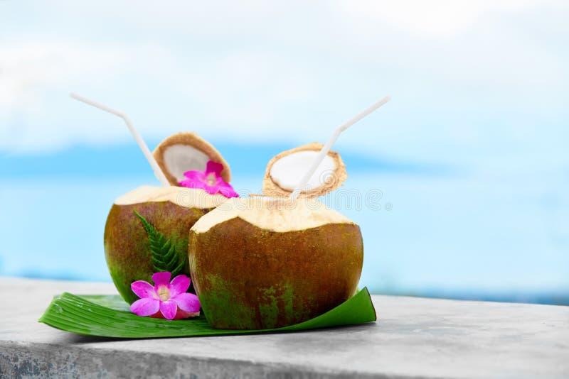 Bebida da dieta Água orgânica do coco, leite Nutrição, hidratação H fotografia de stock