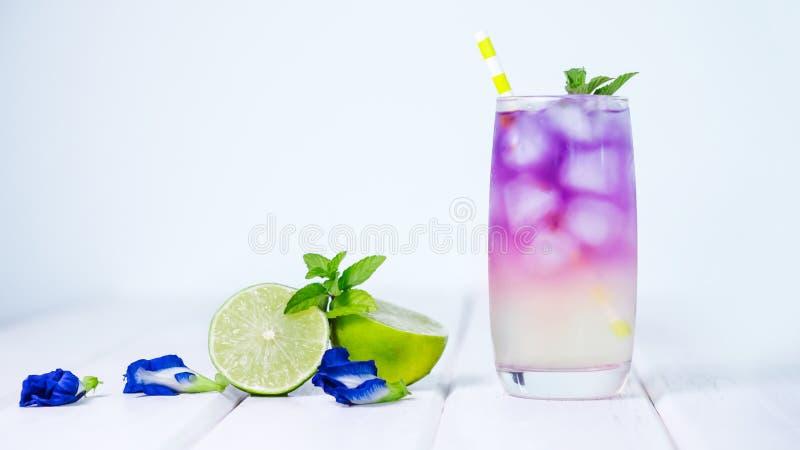 Bebida da flor da ervilha de borboleta com a folha do cal, do mel e da hortelã, um f imagens de stock royalty free