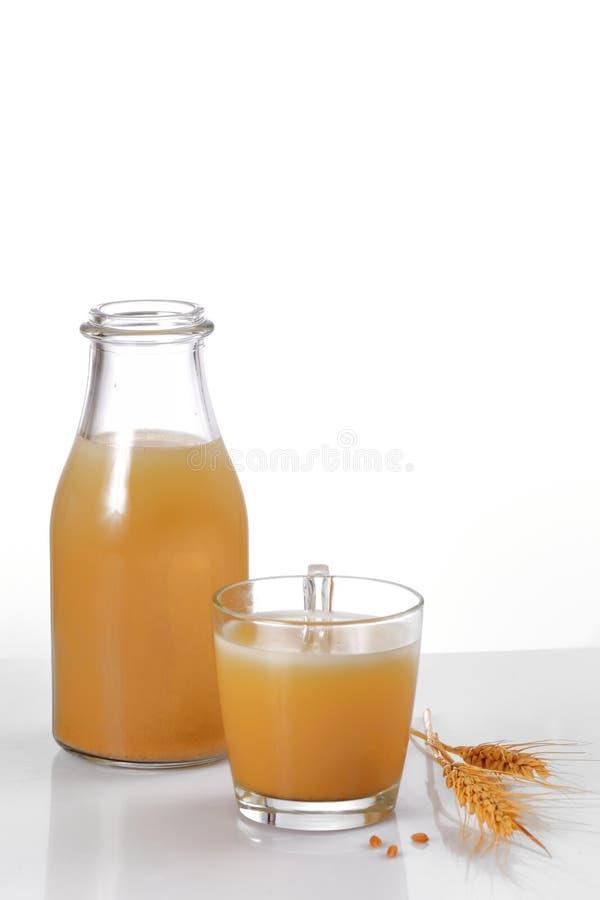 Bebida de Boza fotos de archivo