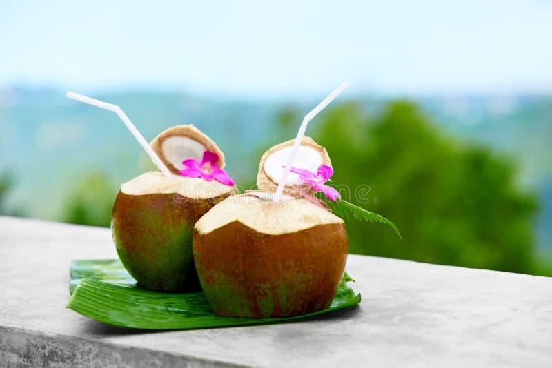 Bebida de la dieta Agua orgánica del coco, leche Nutrición, hidración H fotografía de archivo