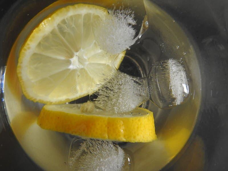 Bebida de la fruta cítrica de la vodka imagen de archivo