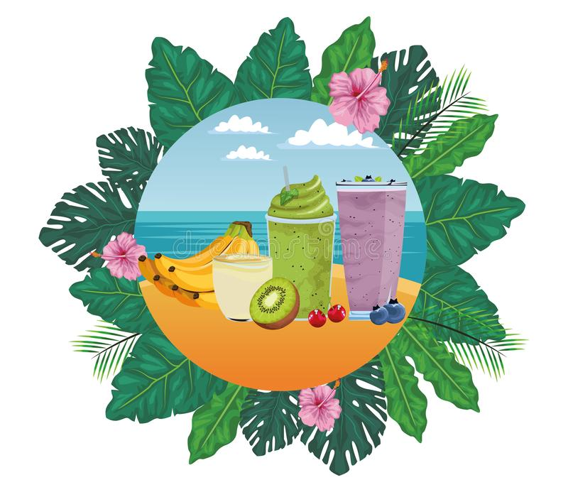 Bebida de la fruta tropical y del smoothie ilustración del vector