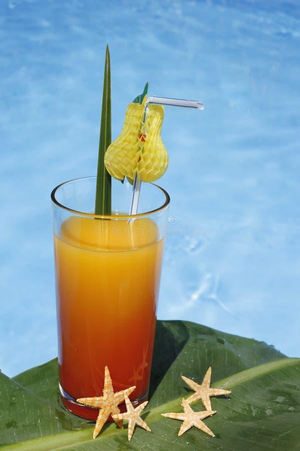 Bebida de la piscina imagen de archivo