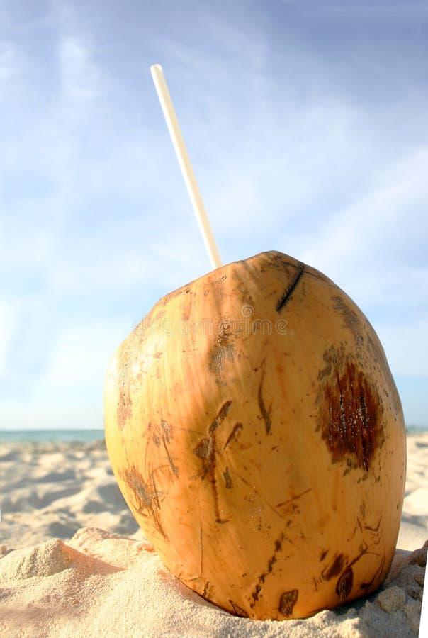 Bebida de la playa del coco imagenes de archivo