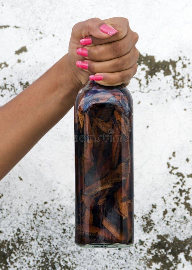 Bebida de Mamajuana do Dominican fotografia de stock