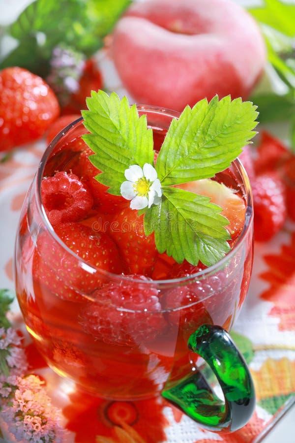 Bebida de refrescamento do verão imagens de stock