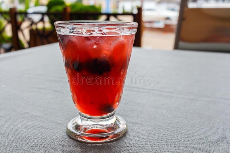 Bebida de restauración del sacador de la sangría de la fruta imagen de archivo libre de regalías
