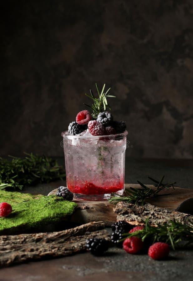 Bebida de restauración del verano con el jarabe, la frambuesa, la zarzamora y el hielo en fondo oscuro imagen de archivo libre de regalías