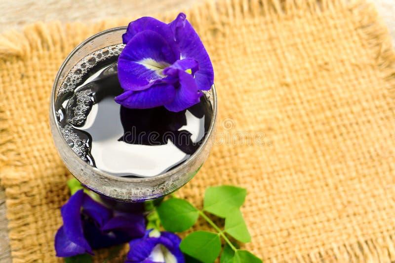 Bebida de restauración de la mariposa Pea Flower, mariposa Pea Juice foto de archivo libre de regalías