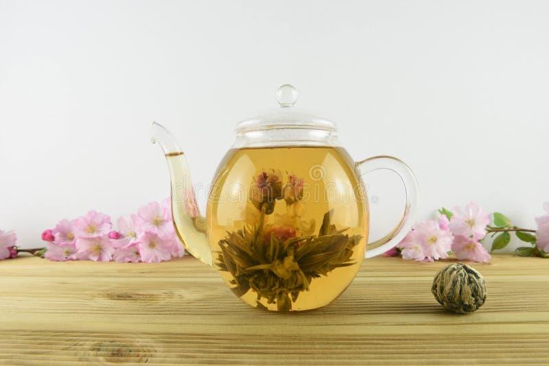 bebida del té con la floración de la flor dentro de una tetera de cristal fotografía de archivo libre de regalías
