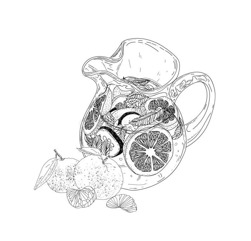 Bebida dibujada mano del hielo del verano del vector con cittrus Limón y menta Bosquejo del agua del Detox Ejemplo linear libre illustration
