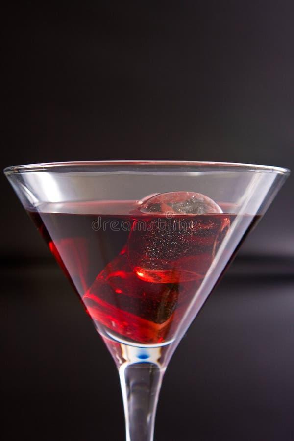 Bebida do partido no gelo fotos de stock