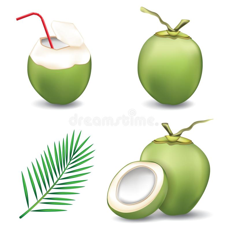 Bebida fresca de água de coco com coco verde e folha de coco isolada em fundo branco ilustração stock
