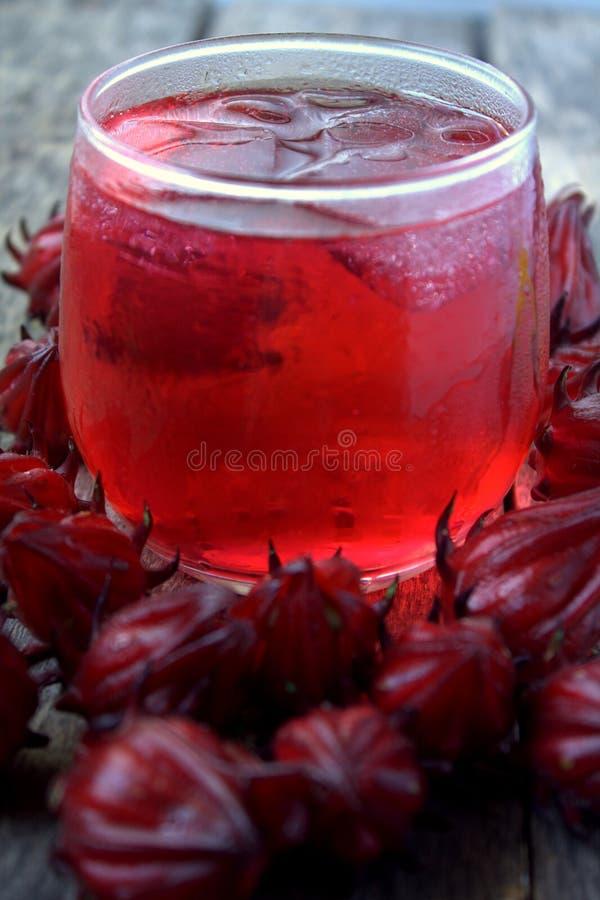Bebida fresca de Rosella ou de fruto do roselle imagem de stock