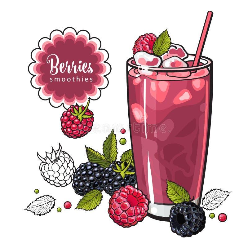 Bebida fresca do verão da framboesa e da amora-preta com frutos e gelo maduros frescos no estilo do esboço ilustração do vetor