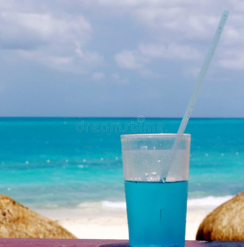 Bebida fresca para el verano caliente fotografía de archivo libre de regalías