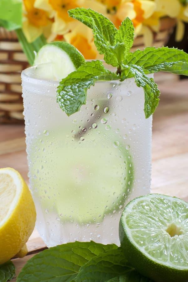 Download Bebida fria foto de stock. Imagem de fatia, feriado, marrom - 10066478