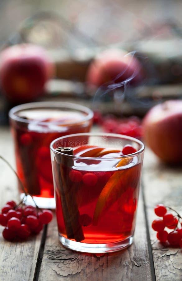 Bebida morna do inverno Vidros com perfurador ou sangria quente para o Natal Ingrediente-vinho, laranja, bagas e especiarias imagem de stock royalty free